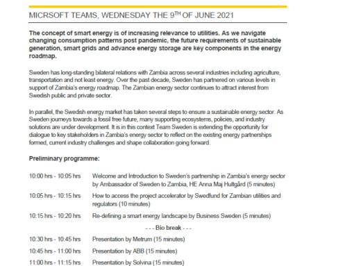 Solvina participating in Smart Energy by Sweden workshop
